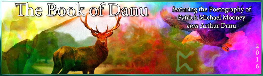 Book of Danu : Poetograph 348 : A Worthy Reflection