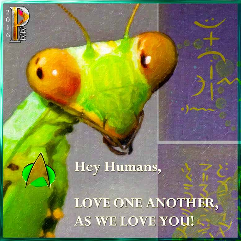 Mantis Message